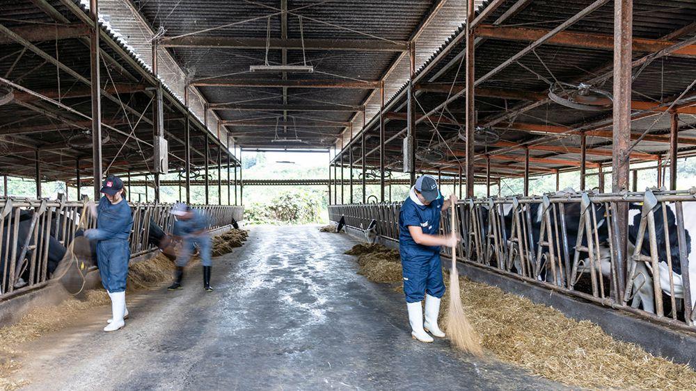 酪農家からヘルパーに